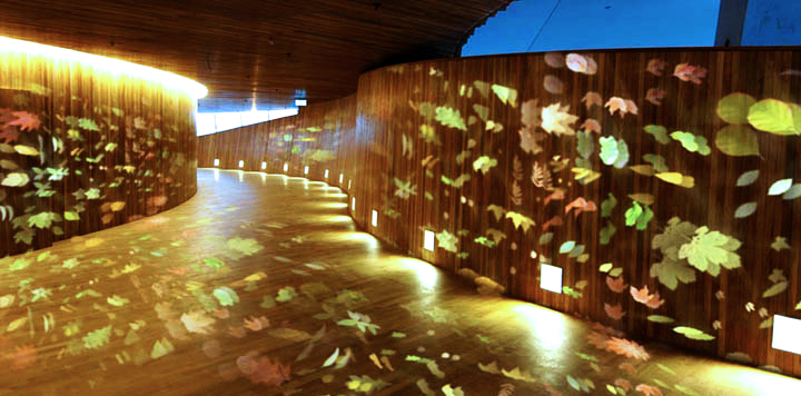 Opera Corridor Lit With the GoboPro LED projector with Sattered Leaves Gobos.